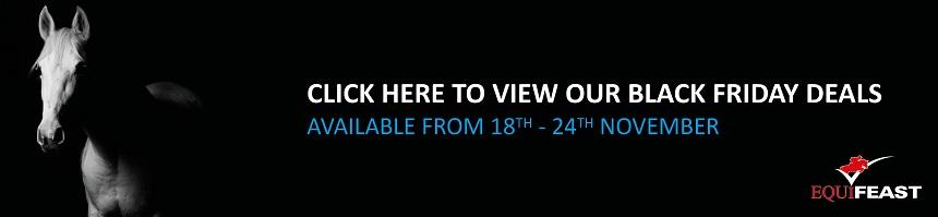 black-friday-website-banner.jpg